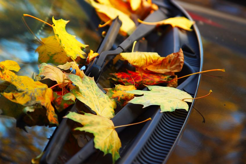 Is Your Car Ready For Fall Burlington Automotive